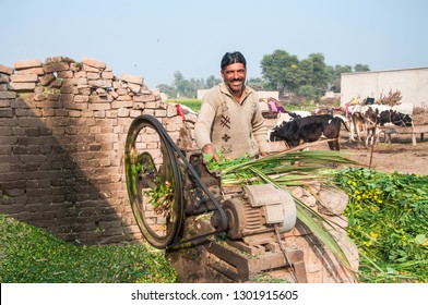 Layyah, Punjab, Pakistan - December 30, 2018: Smiling face of the farmer working in the livestock farm