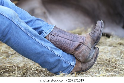 Lazy Cowboy leather boots and pants in blue jeans in the stable of bulls