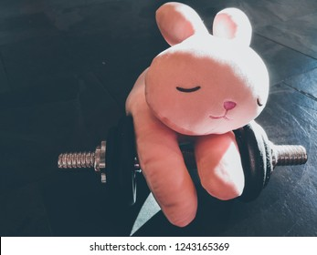 A Lazy pink rabbit toy sleeping on a dumbbell on the floor.