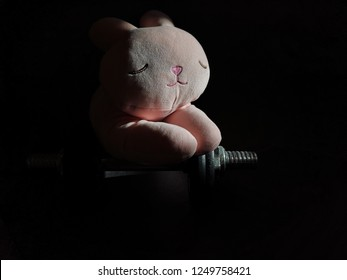 A Lazy pink rabbit toy sleeping on a dumbbell on the dark room.