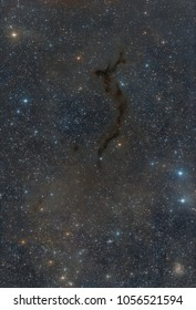 LDN 1082, the Seahorse Nebula, is an extended dark cloud in Cepheus, also known as Barnard 150. The cloud is so dense that the light of the stars behind it are completely absorbed.