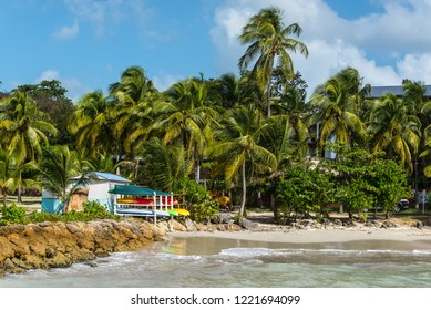 Le Gosier, Guadeloupe - December 21, 2016: Coconut Palm Trees and and picturesque tropical beach in Le Gosier, Guadeloupe, an overseas region of France, Lesser Antilles, Caribbean.