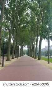 Le Havre cityscape
