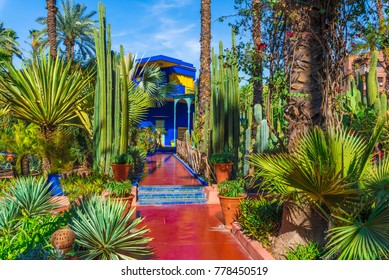 Le Jardin Majorelle, Marrakech, Morocco - November  12, 2017: Amazing tropical garden in Marrakech, Morocco.