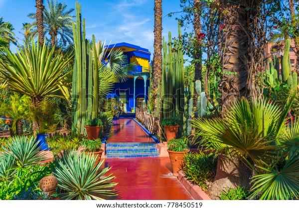 Le Jardin Majorelle Marrakech Morocco November Stock Photo Edit Now