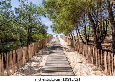Le Porge-Lacanau (French Atlantic Coast), access to the beach