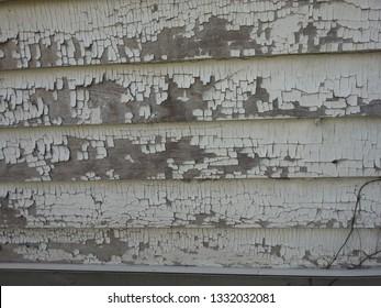 Lead Base Paint
