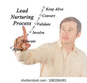 Lead Nurturing Process
