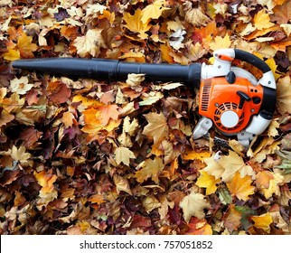 Leaf blower on a bed of  fallen leaves in an autumn day.