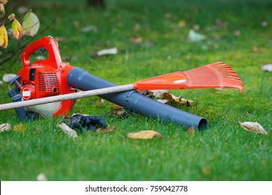 Leaf blower and rake