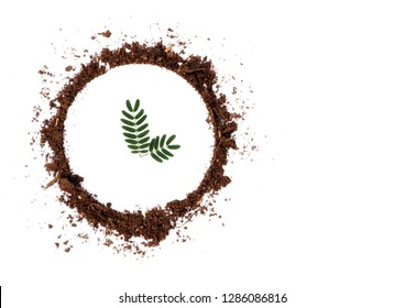 leaf in the circle of soil, conservation concepts.
