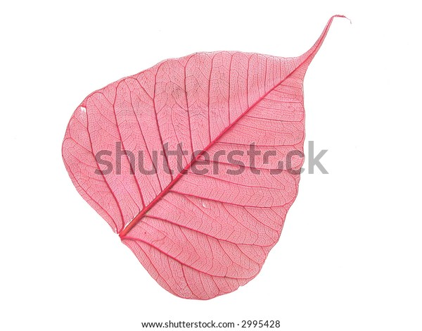 Leaf for creation of ornaments by hands