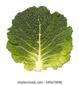 Leaf of green savoy cabbage isolated on white.