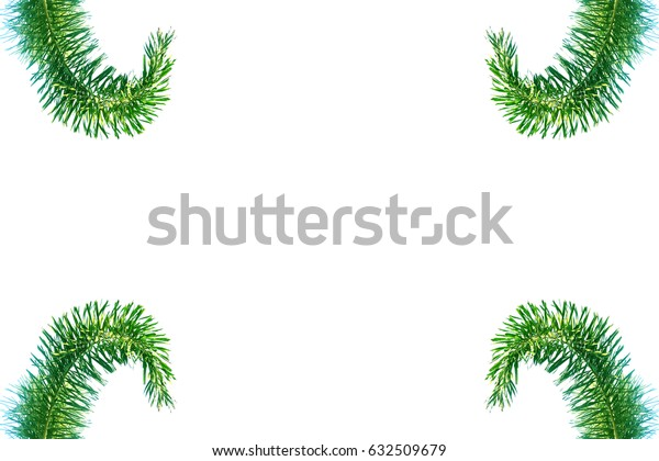 Leaf green tree on isolated white background with copy space