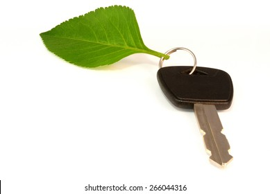 Leaf key ring from electric or hybrid car