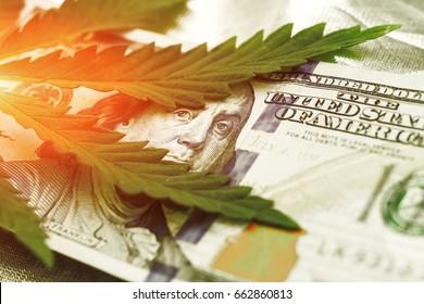 Leaf of marijuana in the hundred dollar bills