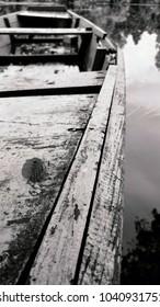 Leaf on a old wooden boat