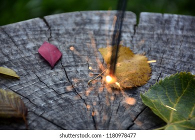 leaf  on the wood,autumn