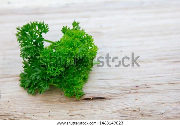 leaf-parsley-on-wooden-board-600w-146814