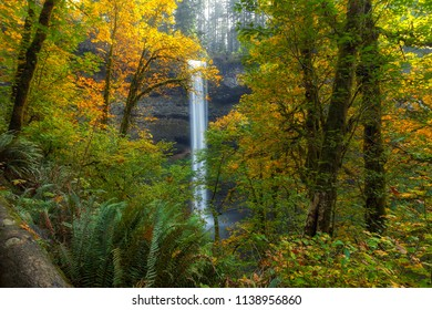 Leaf Peeping at South Falls in Silver Falls State Park in Autumn