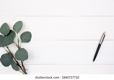 Leaf and pen on wooden table, composition with top view, branch and leaves on wood desk with copy space, texture background, foliage tropical, nobody, flat lay, minimal concept.