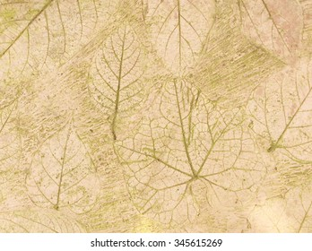 leaf print on natural style cement texture