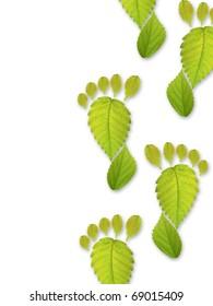 Leaf of shape of foot