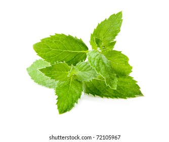 Leaf spearmint on white background