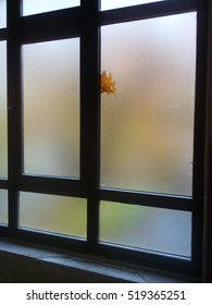 Leaf in the window with autumn colors