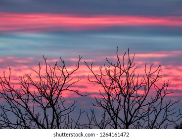 Leafless tree branches are silhouetted by a dramatic colorful sunset sky.
