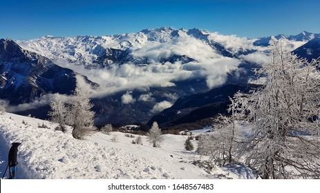 leafless trees and fresh snow with mountain peaks in the distance