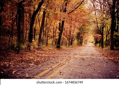 Un frondoso camino otoñal en Arkansas