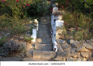 Leafy steps with stone wall