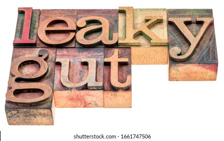 Leaky gut - isolated word abstract in vintage letterpress wood type printing blocks, digestive health concept