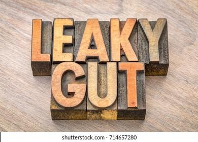 Leaky gut word abstract in vintage letterpress wood type printing blocks