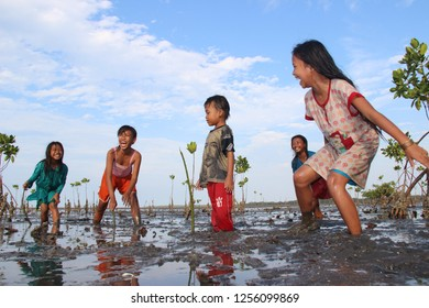 learn to care for mangroves on the coast. November 2, 2018 Pasuruan, Indonesia