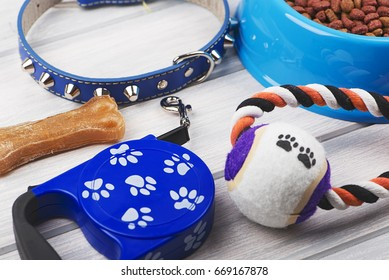 Leash, toy, bone and bowl of dog food