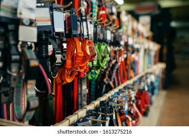Leashes and collars variety on showcase, pet store