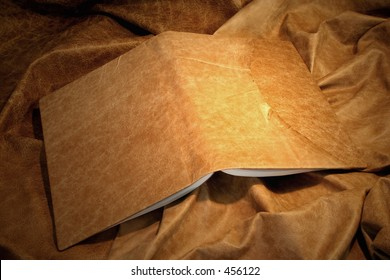 leather book cover - pale