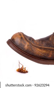 Leather boot ready to trample cockroach