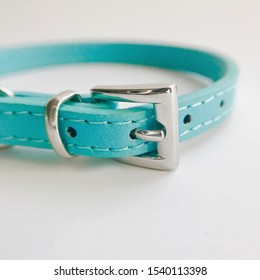 Leather collar for a cat, blue with a bells. Isolated, on a white background.