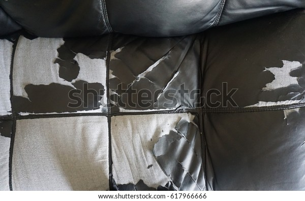Awe Inspiring Leather Peeling Off Sofa Stock Photo Edit Now 617966666 Beatyapartments Chair Design Images Beatyapartmentscom