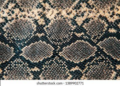 Leather snake skin patern backround