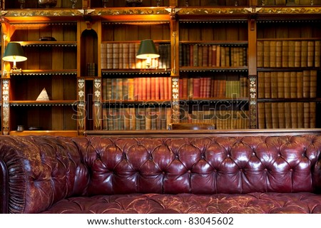 Leather Sofa And Retro Library