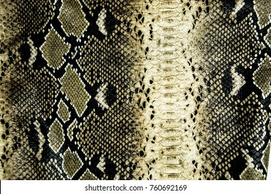 leather surface with python skin texture