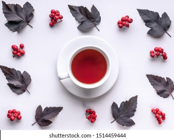 Leaves and berries top view. Autumn composition. Red foliage, ceramic teacup and small fruits on white background. Fallen leaf and rowanbery flat lay. Fall season creative botanical backdrop