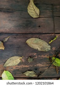 Leaves fall on the plank or wooden floor
