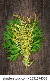 The leaves and flowers of wormwood. Artemisia absinthium ( absinthe, absinthium, absinthe wormwood, wormwood ) plant, on wooden table, close up