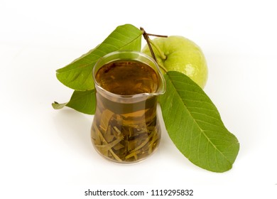 Leaves fresh boiled to arouse hair to stimulate hair roots. And the hair germinate.