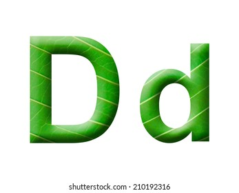 Leaves letter. Alphabet D.